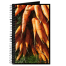 Hudson Valley Farm Art: Carrots
